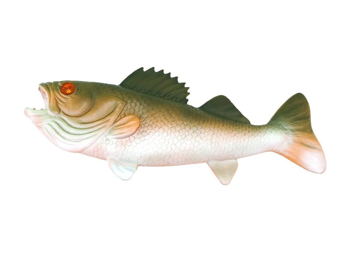 topper f r fish tales a 15713 fish tales. Black Bedroom Furniture Sets. Home Design Ideas